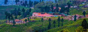 Know before planning Darjeeling and Sikkim Tour